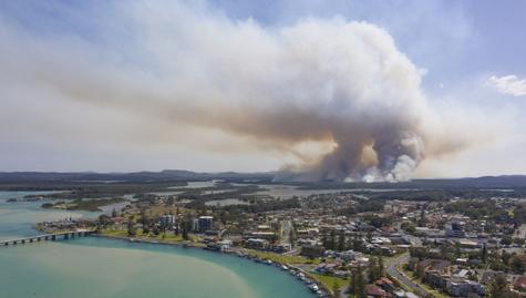 Accounting profession responds to bushfire crisis